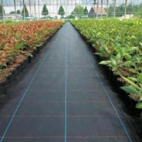Wholesale PP Woven Weed Mat Weed Barrier Fabric from china suppliers